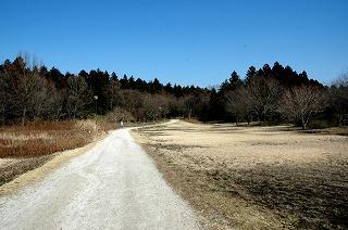 自然観察の森2