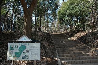 南裏市民の森 階段
