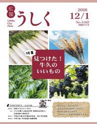 広報うしく平成28年12月1日号表紙